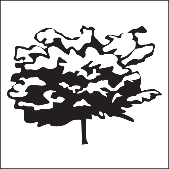 34-upright-tree-form-wide.png
