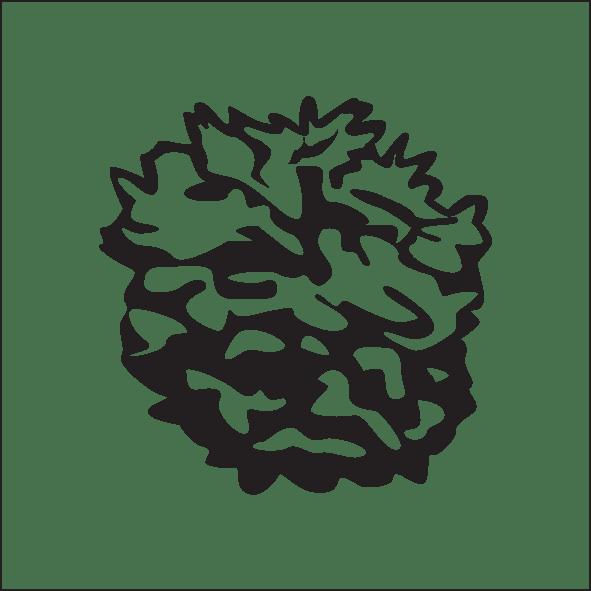 4-globe-abies-lasioc-green-globe.png