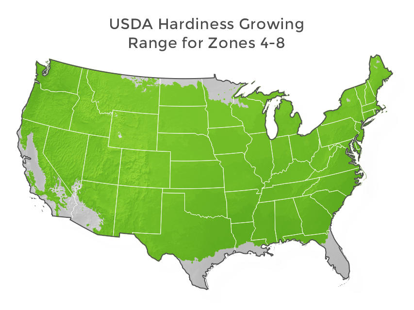 usda-hardiness-growing-range-for-zones-4-8.png